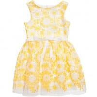 Charabia Yellow Organza Dress