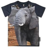 Wild Boys Blue Cotton Elephant T-Shirt